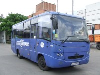 Маз 256